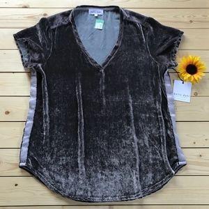 Bella Dahl Stitch Fix Velour Short Sleeve Top NEW